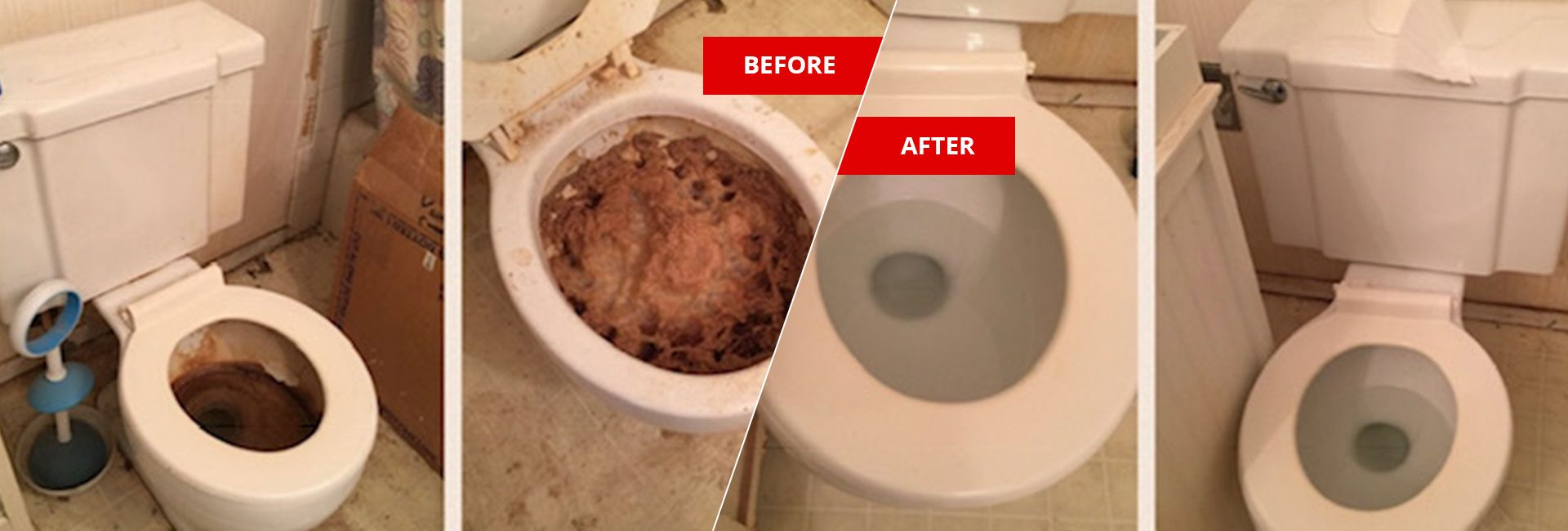 Feces urine cleanup